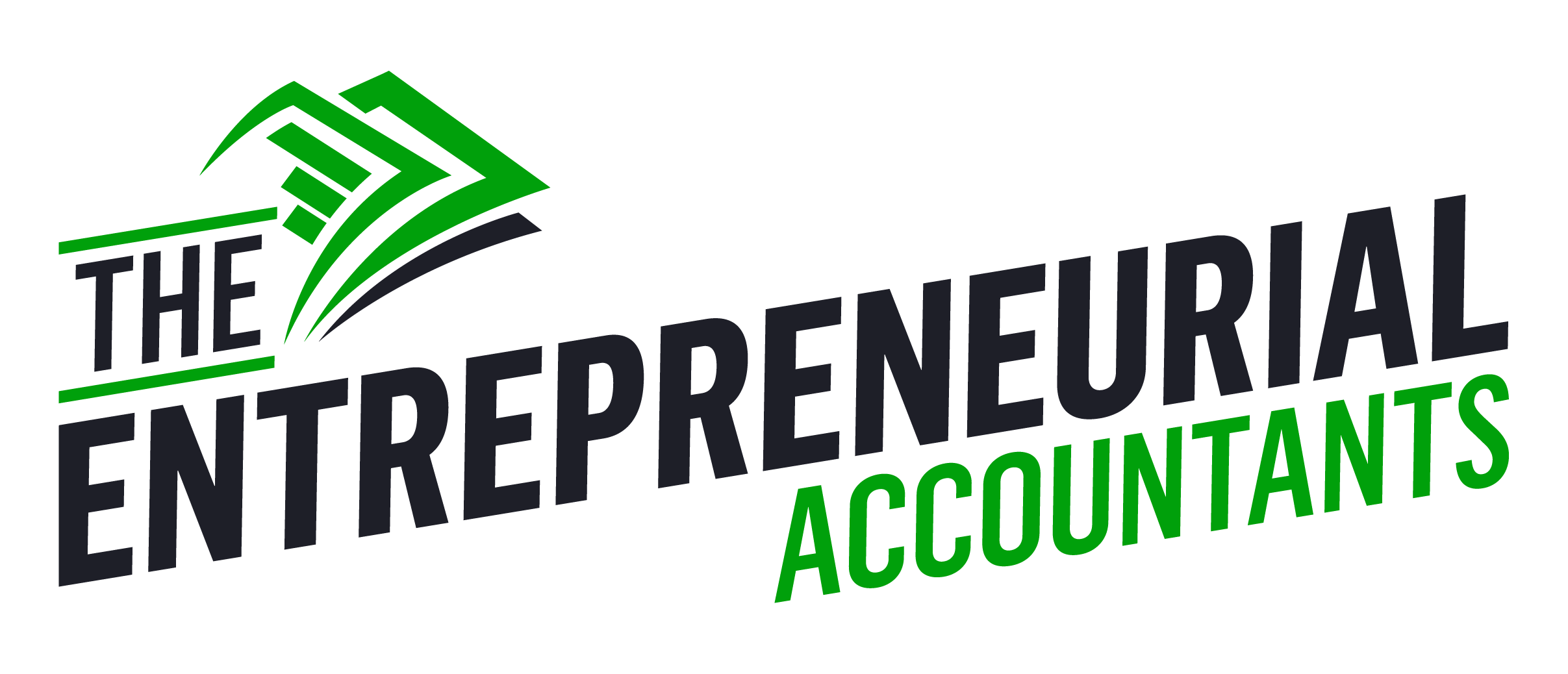 The Entrepreneurial Accountants